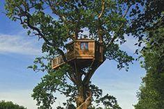 cabanes dans les arbres - Recherche Google