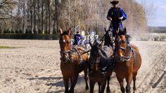 #Hungarian #horse show ⠀ Photo: Martin Klimenta ⠀ #EuropeTravelwithMIR #hungarytours #hungarytourism #visithungary #horsesofinstagram #everydaycentraleurope #travel #tourism #wanderlust #worlderlust #beautifuldestinations #instapassport #travelgram #seetheworld #culture #equestrianlife #hungary #eurotrip #centraleurope #adventuretravel #travellikealocal