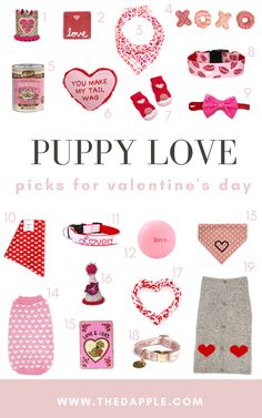 Valentine's Day Gifts for Dogs and Gifts for Dog Lovers Dog Lover Gifts, Dog Gifts, Dog Lovers, Cute Dog Toys, Cute Dogs, Valentines Day Dog, Valentine Gifts, Dog Presents, Puppy Supplies