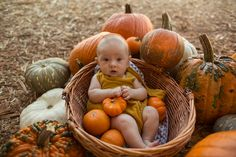 Tips and tricks for creating your own perfect baby pumpkin patch photoshoot. Fall Baby Pictures, Baby Girl Photos, Newborn Pictures, Fall Photos, Fall Baby Pics, Fall Pics, Pumpkin Patch Pictures, Baby Pumpkin Pictures, Halloween Baby Pictures
