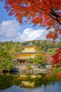 Autumn -- Kinkakuji, Kyoto, Japan by Mahalarp Teeradechyothin on 500px