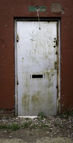 Door Tunstall - December 2013 - Tim Diggles