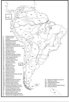 Biogeographical regionalisation of the Neotropical region | Juan J. Morrone - Academia.edu