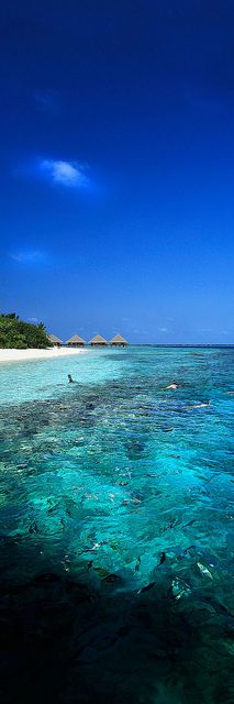 Beautiful Beach, Maldives
