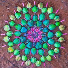 Kathy-Klein-flower mandalas