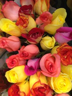 #Roses at #Louisville Costco - 16.99 for TWO dozen. Gorgeous!