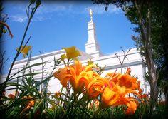 Porto Alegre LDS temple    #MormonLink #LDSTemples  We love Temples at: www.MormonFavorites.com