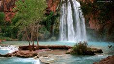 Wodospad, Havasu, Drzewa, Skały, Arizona