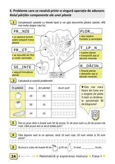 Clasa I : Matematică şi explorarea mediului. Clasa I. Partea I - (E2) Word Search, Bullet Journal, Words, Horse
