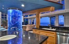 Invite Roy G Biv into Your Home »