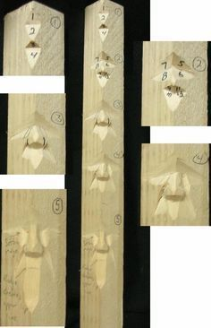 how to start wood carving hobby