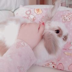 """Image in """"pink babygirl, pink. Baby Pink Aesthetic, Aesthetic Themes, Aesthetic Pictures, Baby Bunnies, Cute Bunny, Baby Cats, Somebunny Loves You, Cute Pink, Cute Baby Animals"""