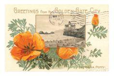 Greetings from Golden Gate City, California Poppy Premium Poster