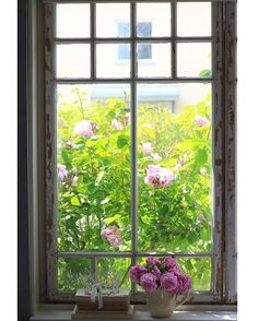 Can't wait til I have this window view again.  Green bushes filled with pink roses.  Big hug to you! #window #view #roses #interior #inredning #inredningsdesign #interior123 #interior2all #interior4all #passion4interior #livingroom