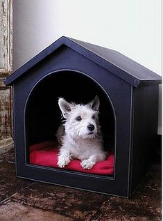 10 Stylish Dog Houses