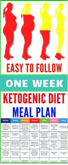 Ketogenic Diet Meal Plan Intended To Fight Heart Disease, Diabetes, Cancer, Obesity And More - Ketogenic Diet Meal Plan, Keto Meal Plan, Diet Meal Plans, Ketogenic Breakfast, Lower Body Fat, How To Cook Asparagus, Types Of Diets, No Carb Diets, Fast Weight Loss