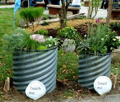 I love the idea of having different garden beds/barrels for the different senses.