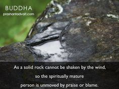 Buddha Buddha, English Quotes, Blame, Mindfulness, Posters, Canning, Rock, Facebook, Website
