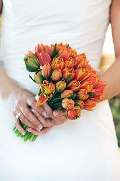 These vibrant yellow and blood orange tulips are the center of attention against a classic white gown.