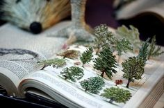 Would a book like this help you remember your trees and their names?