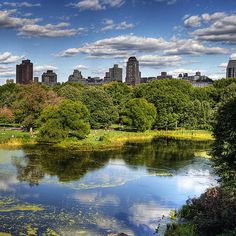 Iconic New York? Central Park is at the top of the list. #Manhattan #NYC