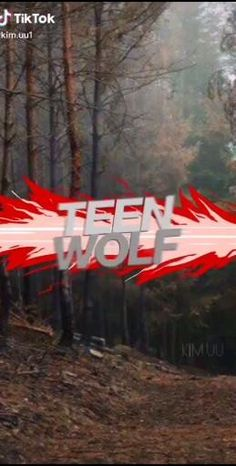 Tyler Teen Wolf, Issac Teen Wolf, Teen Wolf Boys, Teen Wolf Dylan, Dylan O, Teen Wolf Fan Art, Teen Wolf Ships, Alisson Teen Wolf, Wolf With Blue Eyes