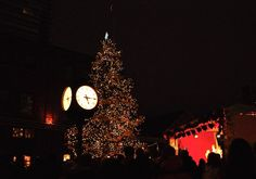 The four best Christmas Markets in Ontario that let you experience European-style street markets without hopping on a plane. European Style, European Fashion, Best Christmas Markets, Christmas Tree, Ontario, Plane, Canada, Marketing, Street