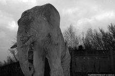 Samara, Konstantin Golovkin's Villa (Cottage with elephants), project of Golovkin and architect V. Samara, Elephants, Villa, Cottage, Architecture, Projects, Animals, Arquitetura, Log Projects