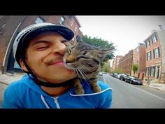Biking With The Kitty