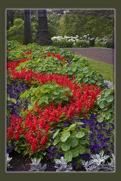 Garden..
