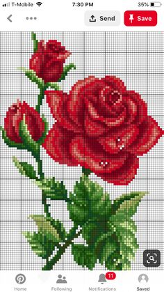 Most current Cost-Free Cross Stitch flowers Concepts rose cross stitch pattern APEX cross stitch Cross Stitch Beginner, Cross Stitch Art, Modern Cross Stitch, Cross Stitch Flowers, Cross Stitch Designs, Cross Stitching, Cross Stitch Embroidery, Cross Stitch Patterns, Pinterest Cross Stitch