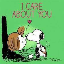 Meu Amigo Charlie Brown, Charlie Brown Y Snoopy, Charlie Brown Christmas, Peanuts Cartoon, Peanuts Snoopy, Snoopy Cartoon, Snoopy Comics, Snoopy Pictures, Funny Pictures