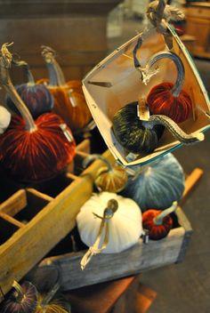 SoBo Style Journal: Velvet pumpkins