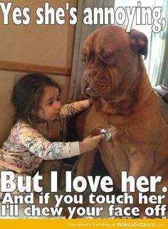 As seen on facebook... mastiffs...