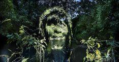 Amazonia – Du street art lumineux en pleine forêt Amazonienne