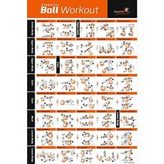 Exercise Ball Poster Laminated - Total Body Workout - Per...