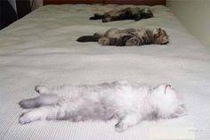 Naše matrace jsou prostě neodolatelné