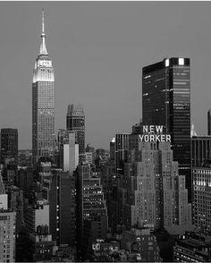 "Greyter NY on Instagram: ""OG skyline • by @thewilliamanderson"""