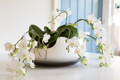 Artisto #Flowers #Style #Deco #Inspiration #Table #Orchids #Phalaenopsis