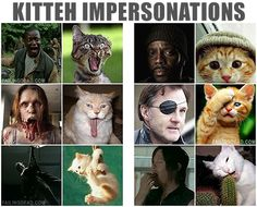 Kitteh Impersonations