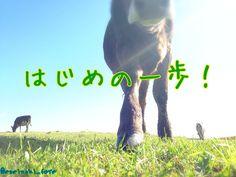 はじめの一歩!