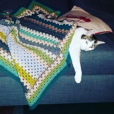 #ldjcrochethookup Day 12 Finally Finished - if I get my cotton ripple beach throw finished today I will include it but for now it's throw back time to a granny stripe blanket I made for my daughter which seems to have been claimed by a friend of the four legged variety  #crochetgirlgang #crochetersofinstagram #crochetlove #crochetblanket #grannystripes #grannystripe by debbiedoesitall