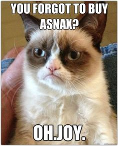 Grumpy Cat, król wszystkich memów!