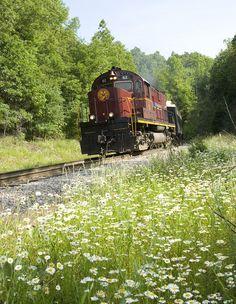 train ride with the grands ... hot chocolate with Santa ... Holiday Express PJ Trains ... Arkansas Missouri Railroad