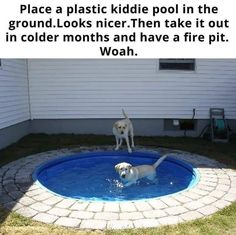 I know this shows it for dogs, but I thought this would be a good idea for our bigger pool. The tiles around it would be really nice so that we don't get grass in the pool when we get in. Deco Jungle, Kiddie Pool, Outdoor Living, Outdoor Decor, Cool Ideas, Home Hacks, My Dream Home, Future House, Future Mom