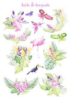 Watercolor Tropical Plants 30 % OFF - Illustrations - 4