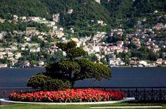 Orticolario 2015: la bellezza in fiore sempre più internazionale:  http://bit.ly/1VDjlXa #LagodiComo #Italia #Orticolario2015 #VillaErba #Fiera