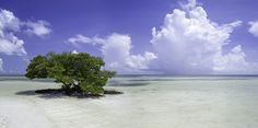 Morada Bay - Benjamin Edelstein Landscape Photography