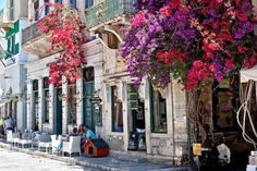 Joined Athens Tours for all Tastes and Budgets