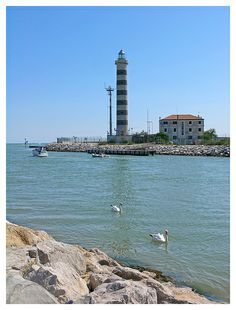 Jesolo - lighthouse with swans